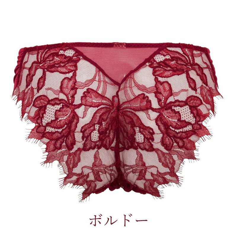 【BRADELIS Gold Label】<br>Ambitious Panty アンビシャス パンティ